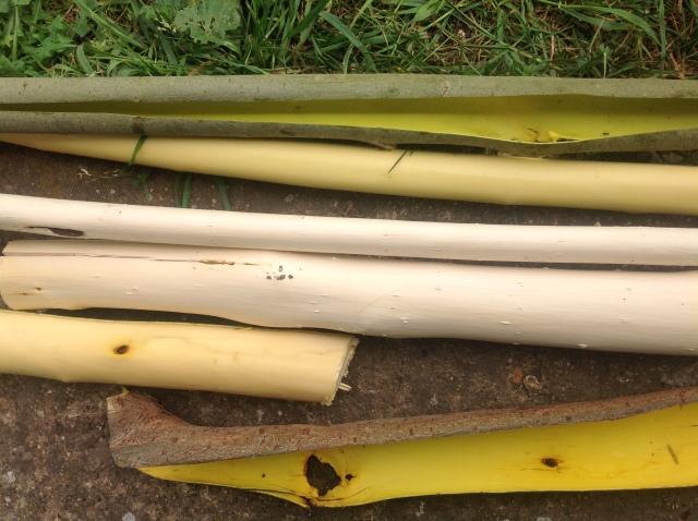 preparing willow